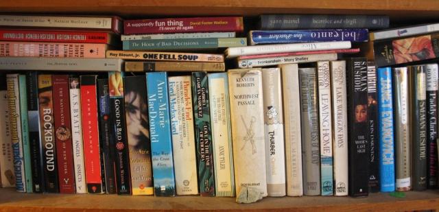 bookshelf 006