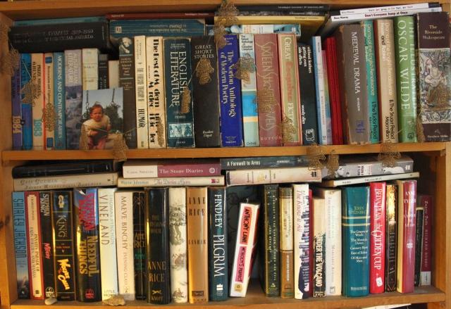 bookshelf 009